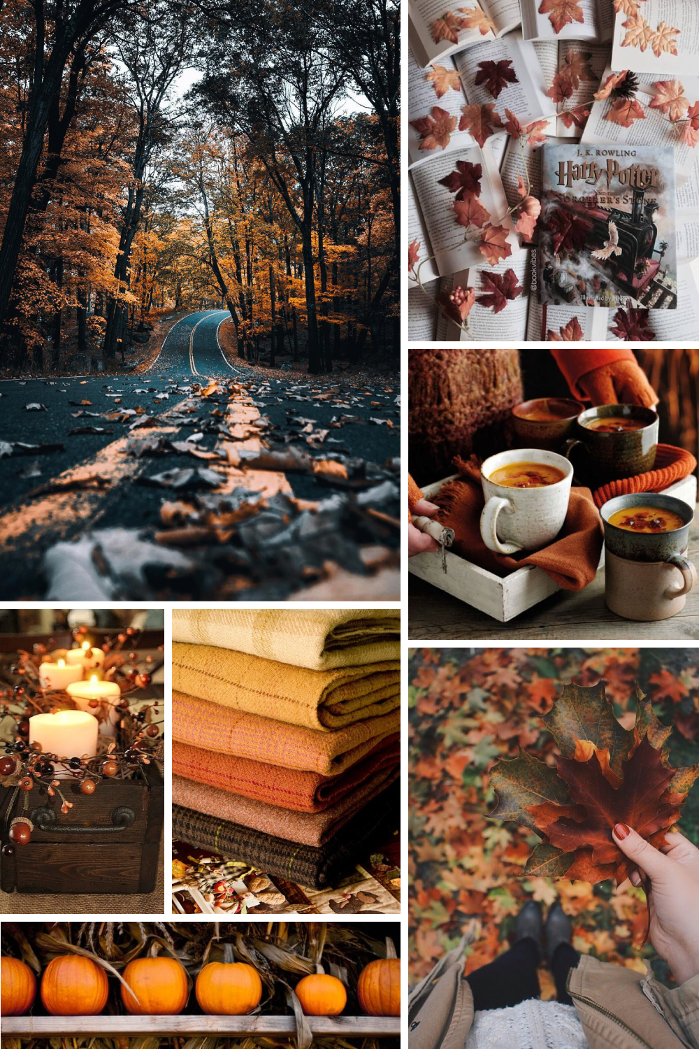 Fall Fun | What Fall Means to Me