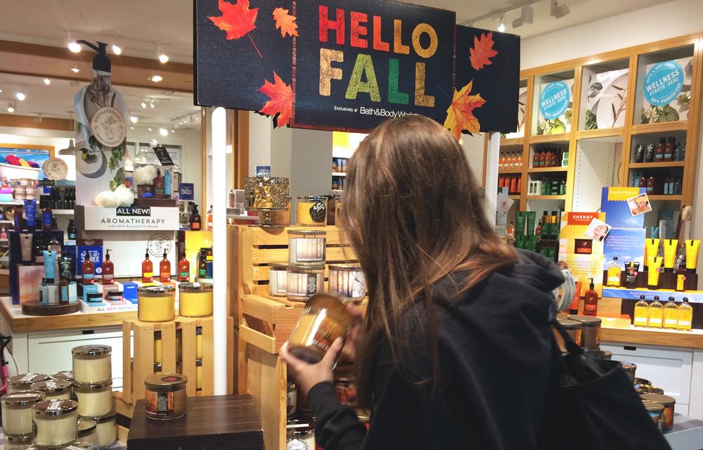 Fall Fun Series   Seasonal Wrap-Up
