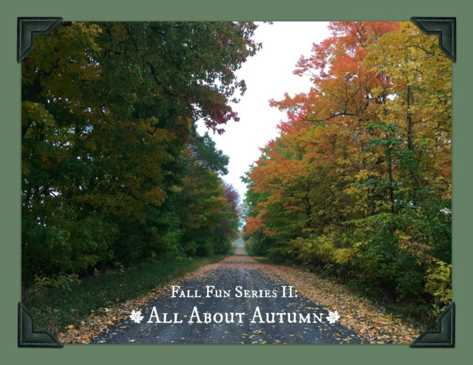 Fall Fun Series: All About Autumn | Festive Fall Tag