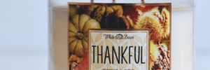 Fall Fun Series | Thanksgiving Traditions